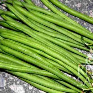 Faraday zöldbab bio vetőmag