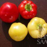 Mustafa almapaprika bio vetőmag