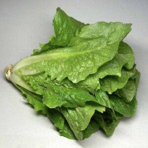 romai.salata.jpg