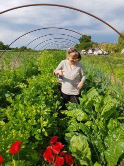 Biokerti szemlélet nyáron