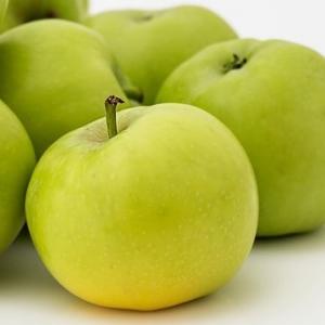 Fehér Klára alma szabadgyökerű gyümölcsfa oltvány